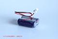 马扎克 D80UB016170 移机检知专用电池 2*CR17450 现货 批发 9