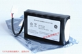2023227-001 GE  DASH 1800 Monitor cell