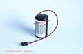 LS33600-CN1 9A-100005111  Cameron NUFLO  Flowmeter valve battery