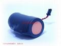 SAFT法国LS33600B  电池 D型 3.6V 17 Ah D-size 5