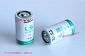 SAFT法国LS33600  锂电池 D型 组合 电池组 6