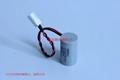 TL-5276 TL-5276/W 阳光Sonnecell 锂电池