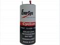 0840-0004 Cyclon EnerSys 西科龙 2V 12Ah 铅酸蓄电池 14