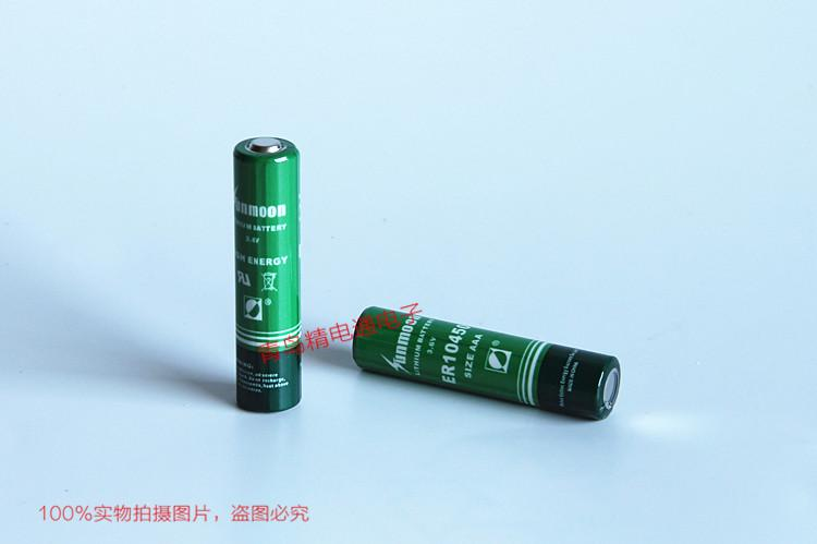 武汉日月 ER10450 ER10/45 3.6V 锂亚硫酰氯电池 6