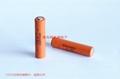 ER10450 ER10/45 3.6V 锂亚硫酰氯电池