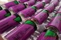 TL-5920 C 原厂塔迪兰TADIRAN 锂电池 可按要求加 焊脚 插头 TL5920 12