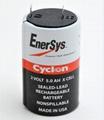 0800-0004 Cyclon EnerSys 西科龙 2V 5.0Ah 铅酸蓄电池 12