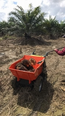 Oil Palm Power Barrow Mini Dumper Garden