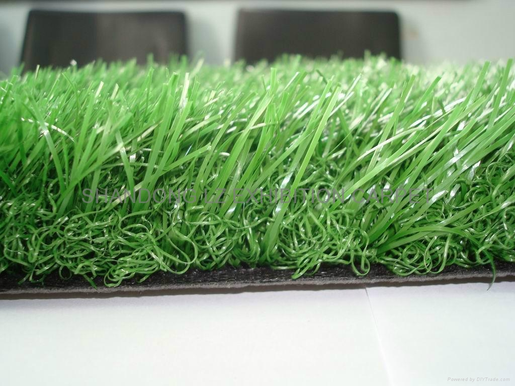 Beaulieu artificial grass:Rigiera Grass,Highland,Winter,Wimbledon,Squash,Spring, 1