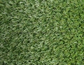 Garden floorcovering: artificial grass needle punch and tufted Cfl-s1 2*30m, 4*3 7