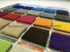 Exhibition Carpet: Needle Punch/Cut Pile+backing: Foam, Action, Latex