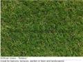 FIFA 10mm leisure,50mm sportsfield 20mm landscaping artificial grass 12