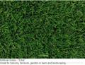 FIFA 10mm leisure,50mm sportsfield 20mm landscaping artificial grass 15