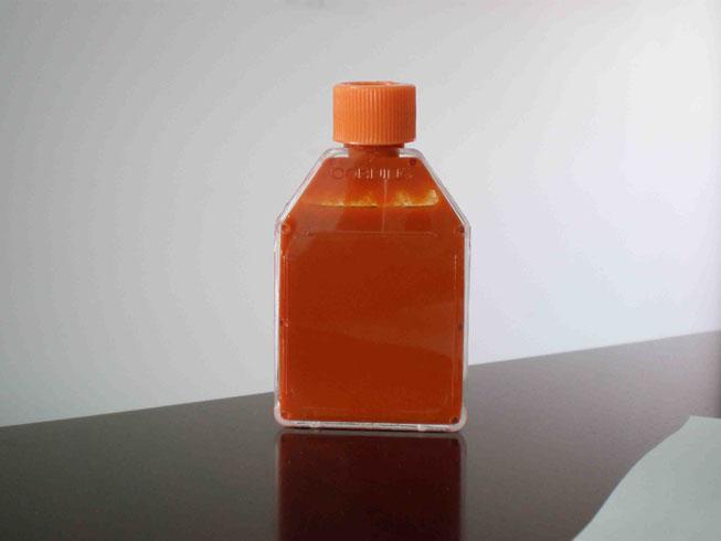Goji Juice Concentrates 1