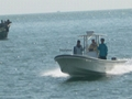 Panga 30 fishing boat