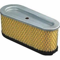 Air Filter Briggs & Stratton 493909