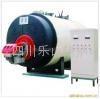 常压热水锅炉 1