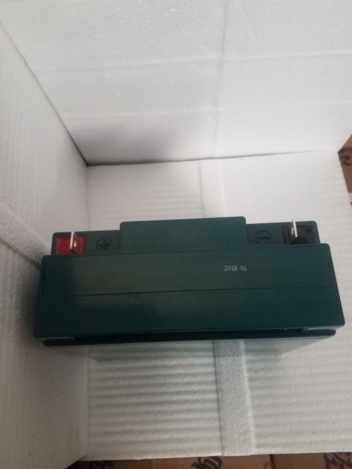 Battery factory 12v17ah maintenance free lead-acid battery OEM 3