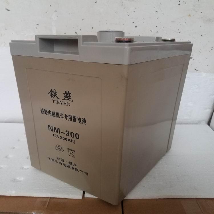 NM-300电池 铁燕牌 内燃机车专用免维护铅酸蓄电池 2