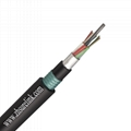 Outdoor Aerial 12Core Double jacket armoured Fiber Optical Cable GYFTY53