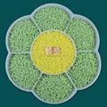 通用色母粒PP环保色母粒 粉绿色