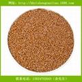 高级PBT塑料彩色母粒 抗化学性强