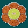 【潘通165C】通用级PP注塑色母粒 橙色