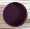 供应溶剂染料 溶剂紫707