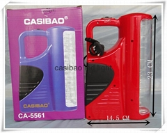 Free shipping CASIBAO 60