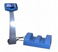Safershoe Metal Detector