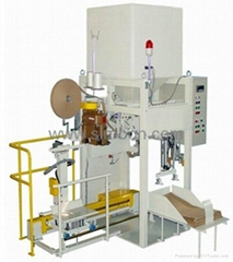 Automatic Bagging System