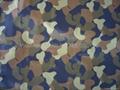 Printed Nylon Taffeta