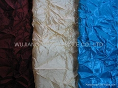 Crinkled Nylon Polyester