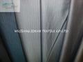 Stripe Suit Fabric