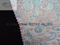 Jacquard Fabric Bonded With Cotton Fabric (Hot Product - 1*)