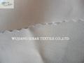 Bright Polyester Spandex Fabric