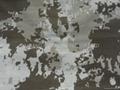 228T 尼龙印花塔丝隆 4