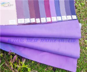 Nylon Polyester Down Wear Fabric  2