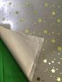 Star reflective fabric