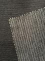 锦氨树皮皱针织织物 4
