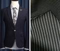 Stripe Polyester Nylon Fabric/Interwoven Fabric 6
