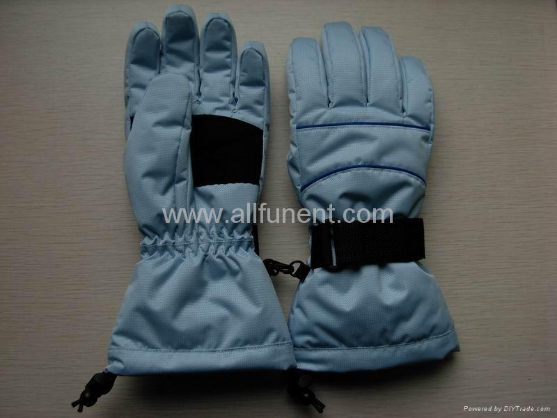 Ski Gloves 1