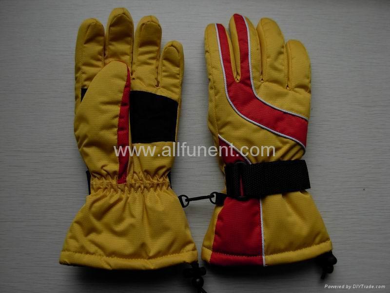 Ski Gloves 2