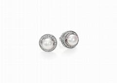 Rhodium Plated Pearl Set Stud Earring