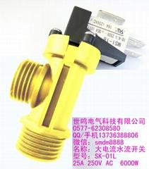 Flow pressure switch