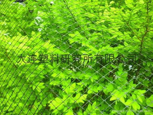 Anti-bird-net、bird net 3