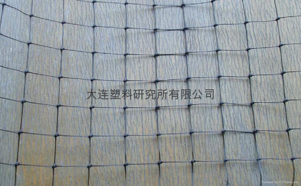 Anti-bird-net、bird net 4