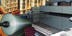 BOP雙向拉伸網產品及生產線