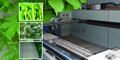Plant support netting production line