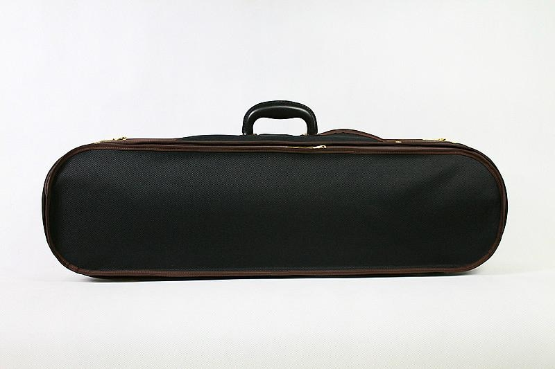 violin case 2